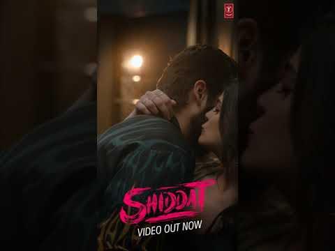 Shiddat Title Track  - Live Now | Sunny Kaushal, Radhika Madan, Mohit Raina, Diana Penty | #YTShort
