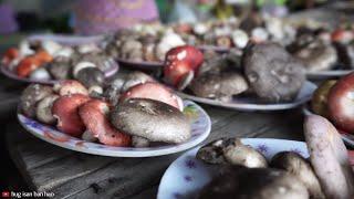 แกงเห็ด |  thai mushroom soup recipe isaan village