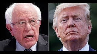 Media Claims Bernie Is Just Like Trump For Comical Reason