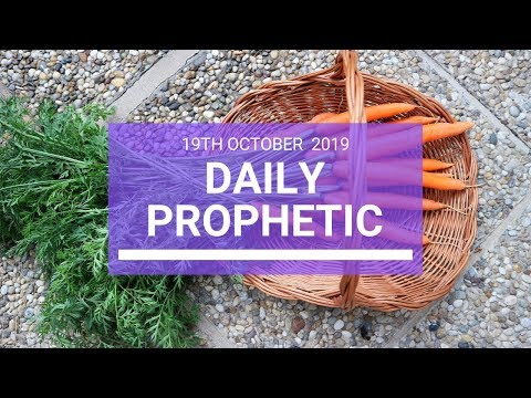 Daily Prophetic 19 October Word 3