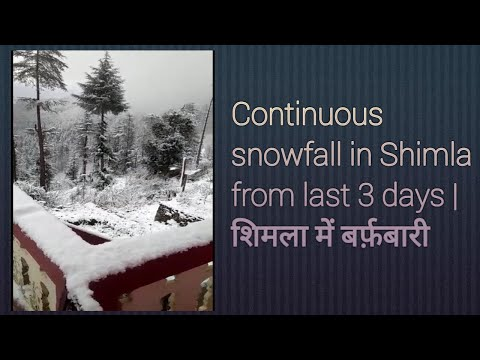 Continuous snowfall in Shimla from last 3 days   शिमला में बर्फ़बारी