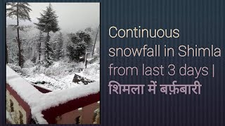 Continuous snowfall in Shimla from last 3 days | शिमला में बर्फ़बारी