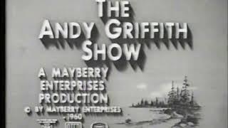 Desilu/Mayberry Enterprises/Viacom (1960/1978)