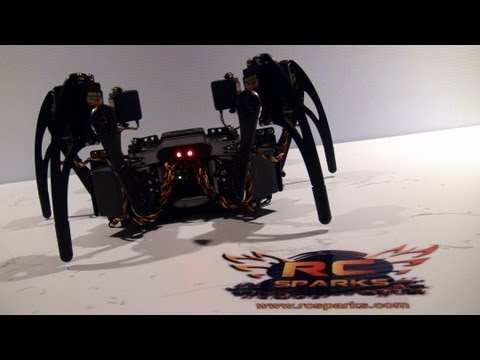 RC Spider nightmares are made of these.. - UCxcjVHL-2o3D6Q9esu05a1Q
