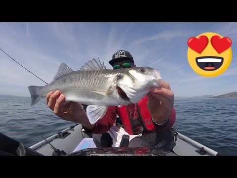 kickin their bass tv : How to catch fish with bass fishing |Bass fishing tips & tricks