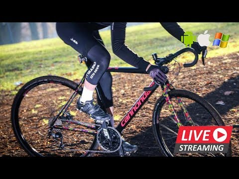 Cyclo Cross - Vestingcross Hulst, Hulst (NED) LIVE