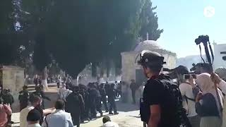 Clashes erupt between Palestinians and Israeli police at Jerusalem holy site