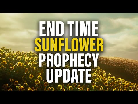 The End Time Sunflower Prophecy UPDATE