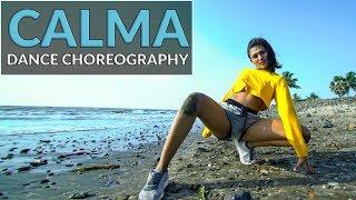 Pedro Capo, Farruko - Calma Remix | Dance Cover | Nisha Bhagat | Kings United