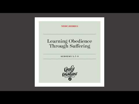 Learning Obedience Through Suffering   Daily Devotional