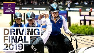 How Bram Chardon became the new FEI Driving World Cup™ champion | Equestrian World