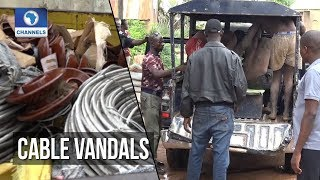 Taraba Vigilante Group Arrests Electricity Cable Vandals