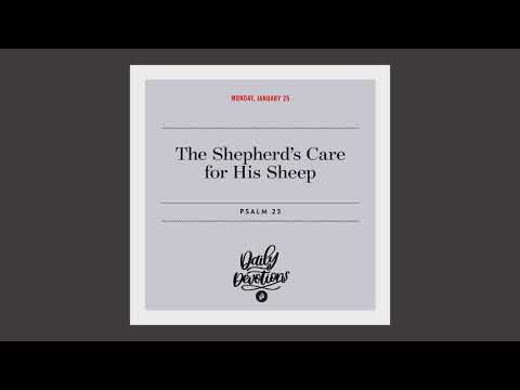 The Shepherds Care for His Sheep  Daily Devotional