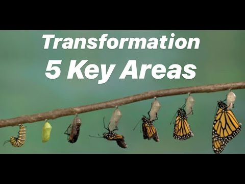 Transformation is needed in these 5 areas!
