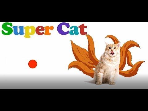 Video Kucing Lucu Main sama Anak Kecil