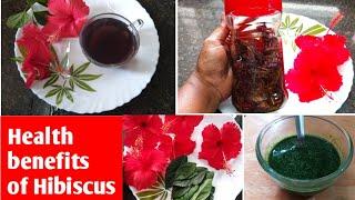 செம்பருத்தியில் இவ்வளவு நன்மைகள் இருக்கா?👍//Benefits of Hibiscus Tea//Health & Beauty Tips🌹😍