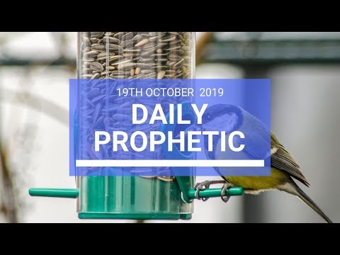 Daily Prophetic 19 October Word 2