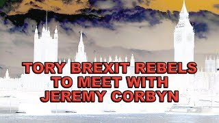 Tory Brexit Rebels agree to meet with Jeremy Corbyn!