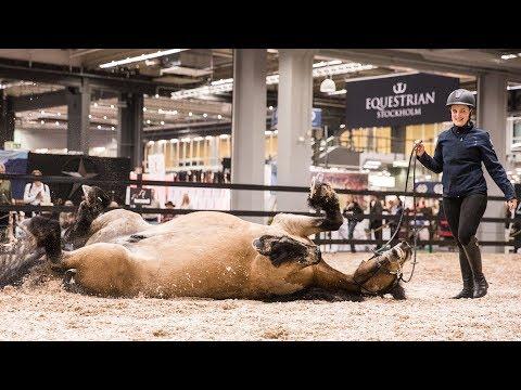 EuroHorse - vilken hästfest!