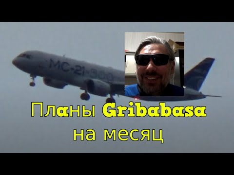 Грибабас и Клюкер пасут самолёт и планы Грибабаса на месяц