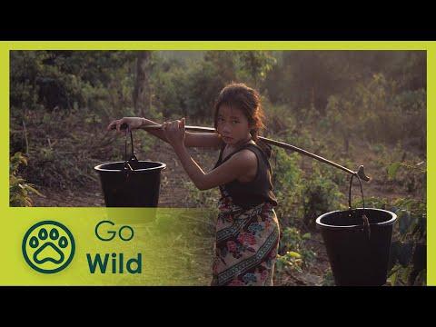 Laos Wonderland (full documentary) - The Secrets of Nature - UCVGTgXC1P--xM480Z6DqyAg