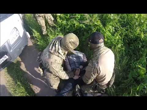 Основателя нарколаборатории из Ярославля осудили на 15 лет (видео задержания)