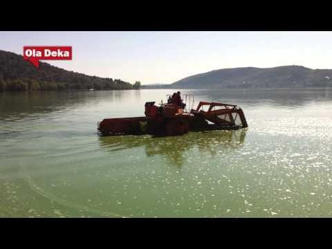 """""""Πρασίνισε"""" και πάλι η λίμνη της Καστοριάς!"""