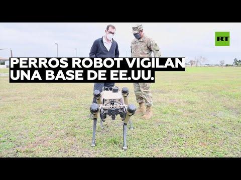 Una base de EE.UU. usa perros robot para vigilar su territorio