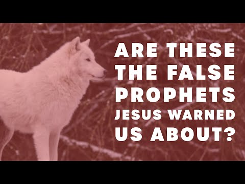 Are These the False Prophets Jesus Warned Us About?