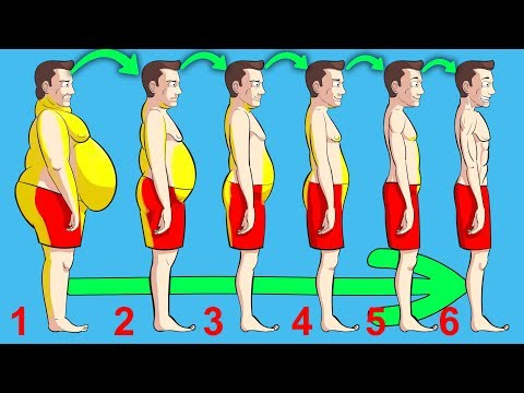 What Happens If You Walk (30 MIN PER DAY) - UC0CRYvGlWGlsGxBNgvkUbAg