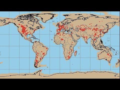 ¿Dónde es Más Fácil Encontrar Dinosaurios? 🦖 🦕