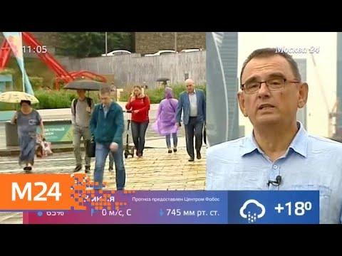 Москвичей ожидает дождливая погода во вторник - Москва 24