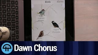 Dawn Chorus on iOS