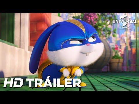 MASCOTAS 2 - Tráiler 3 (Universal Pictures) - HD