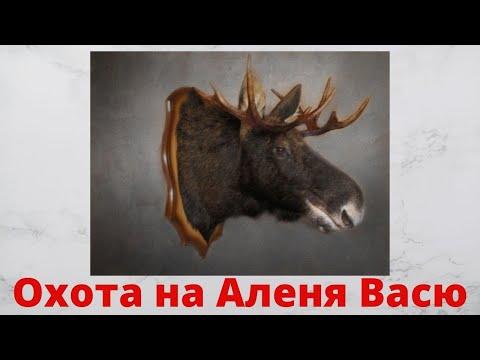 Как проучить Аленя Василия photo