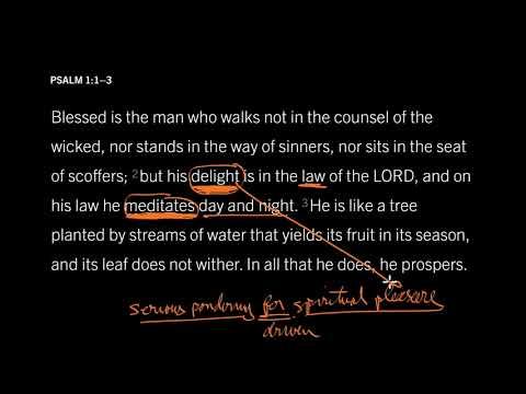 Psalm 1:2 // Memorize the Bible to Maximize Your Joy