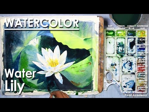 Watercolor Painting : Waterlily | step by step