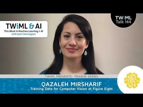 Qazaleh Mirsharif Interview - Training Data for Computer Vision at Figure Eight