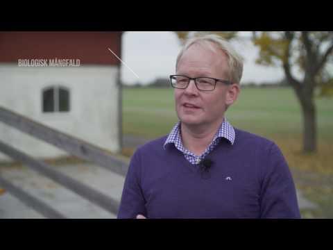 Lantmännens hållbar odling - Topp 3 från hållbarhetschefen Claes Johansson