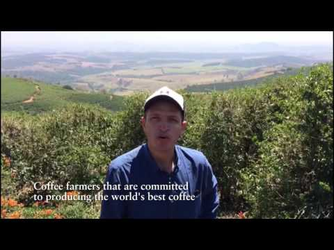 International Coffee Day 2016, Yara in Latin America
