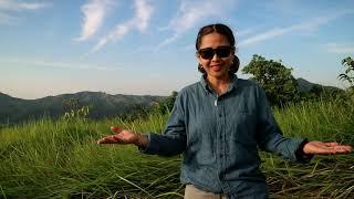 Amazing Borneo Sunrise indah diatas bukit Sangkar#vlog Petualang Jelita