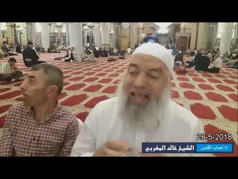 الشيخ خالد المغربي | دخول سيدنا آدم الجنة . طاووس الملائكة (ابليس)