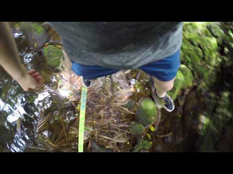 Alex Mason's GoPro View on an 8-Line Hawaiian 'Slackladder'