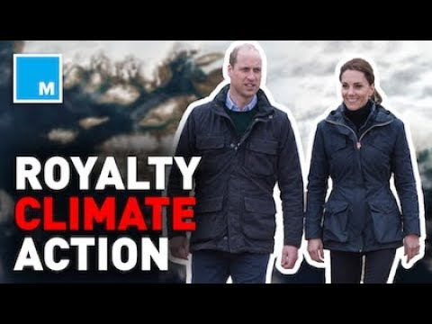 📺 British Royals Want Climate Change Action Now
