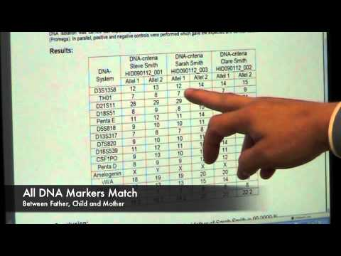 Understand Your DNA Test Results - UCpKE4Rd6pKGLHNiKlebyr3A