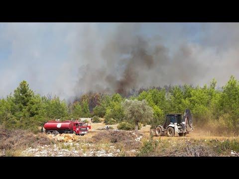 Antalya'da Serik'te orman yangını