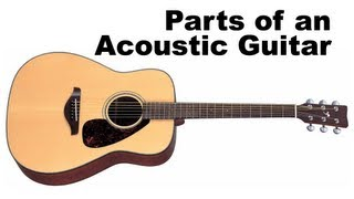 Parts Of An Acoustic Guitar Tutorial For Beginners Lesson