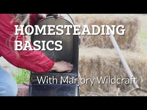 Homesteading Basics: Never Lose Your Gardening Tools Again With This Super-Simple Hack