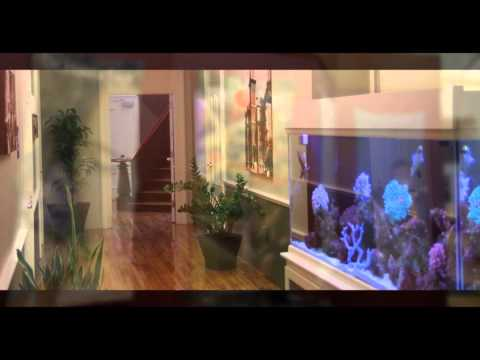 SilverTech DMA 2011 Official Song and Video