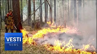 On the Frontlines Fighting Fire! Russia's Forest Service Team Working Overtime in Siberia!